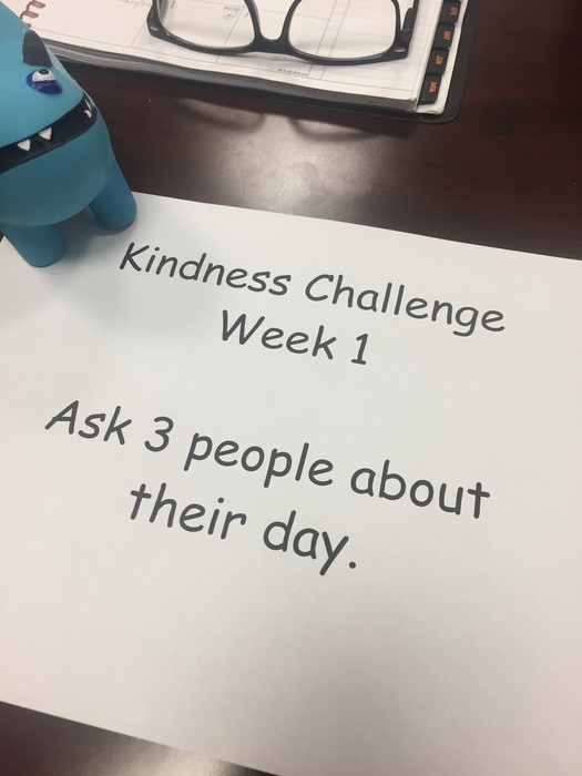 Weekly Kindness Challenge