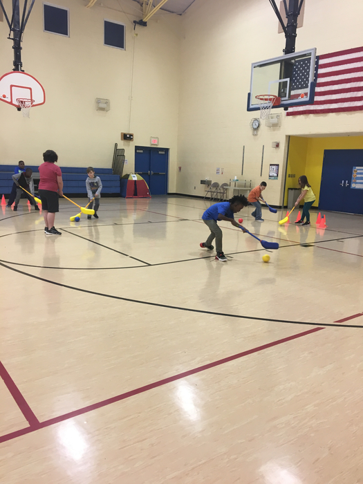 3rd grade playing 6 Goal Hockey