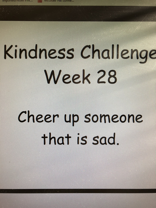 Kindness Challenge Week 28!