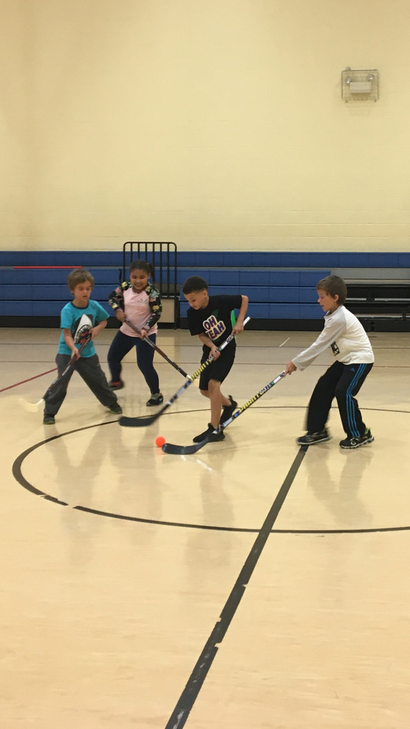 2nd grade playing hockey