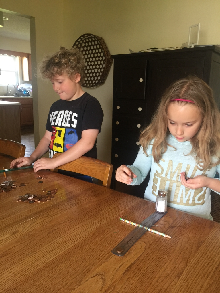 Science: Experimenting with levers at home
